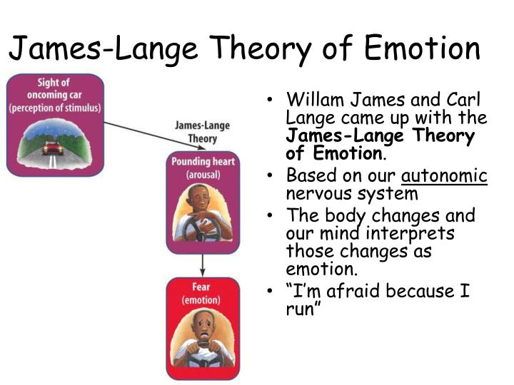 James-Lange Theory of Emotion