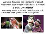we have discussed the energizing of sexual motivation but have yet to discuss its direction
