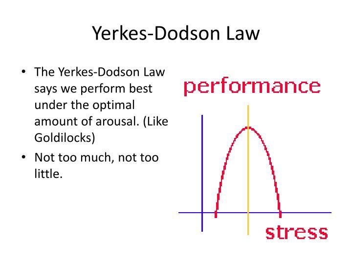 Yerkes-Dodson Law