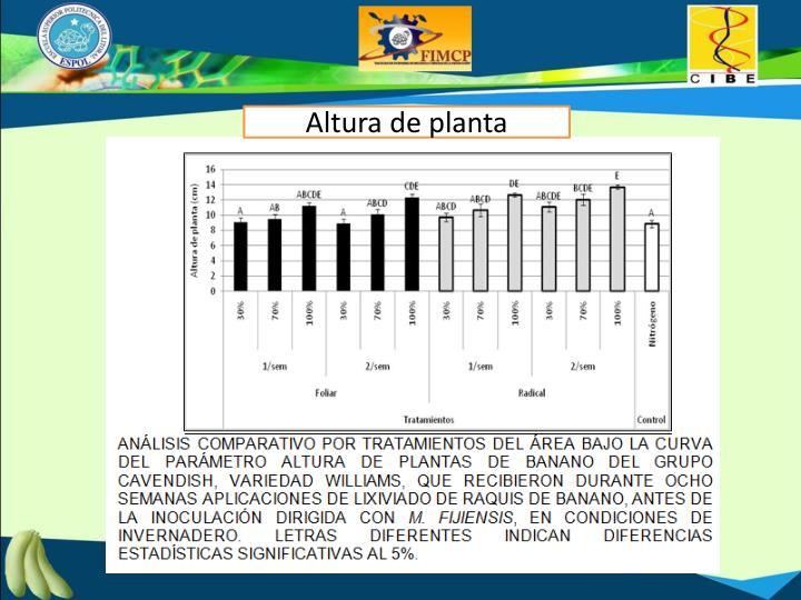 Altura de planta