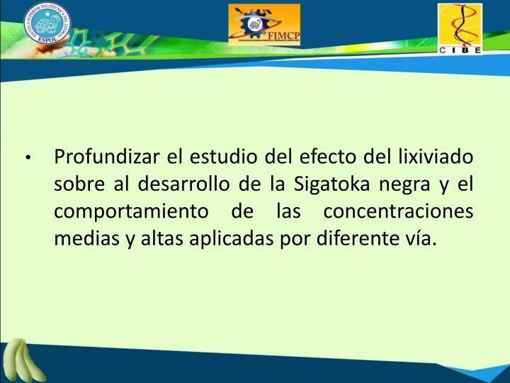 Profundizar el estudio del efecto del lixiviado sobre al desarrollo de la Sigatoka negra y el comportamiento de las concentraciones medias y altas aplicadas por diferente vía.