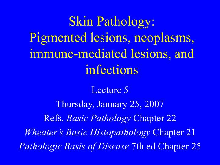 skin pathology pigmented lesions neoplasms immune mediated lesions and infections