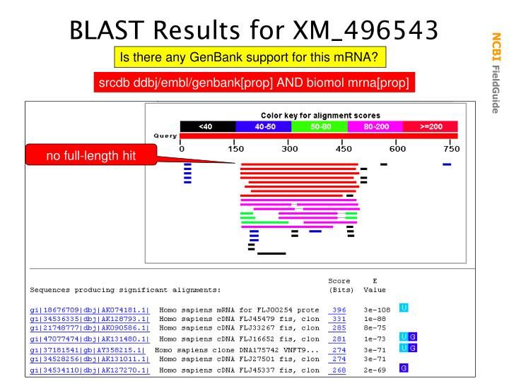 BLAST Results for XM_496543