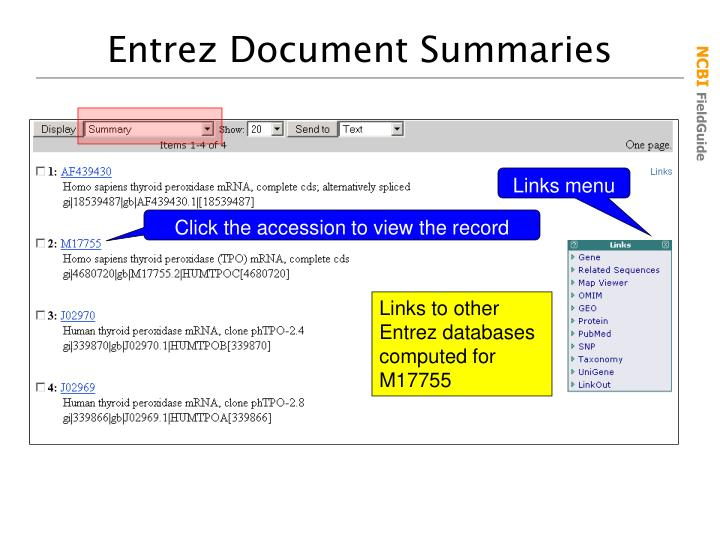 Entrez Document Summaries
