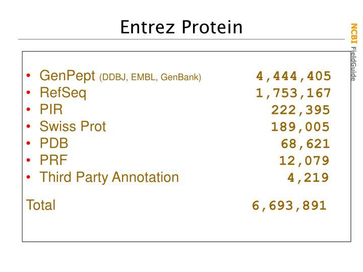 Entrez Protein