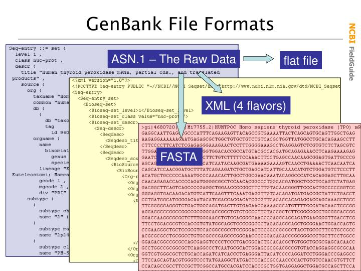 GenBank File Formats