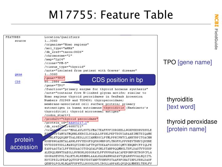 M17755: Feature Table