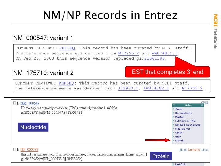 NM/NP Records in Entrez