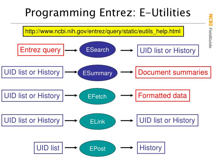 Programming Entrez: E-Utilities