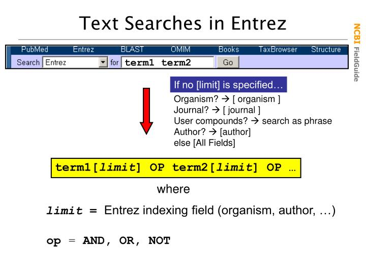 Text Searches in Entrez