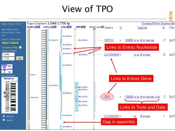 View of TPO