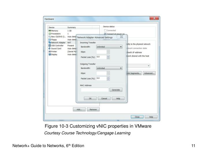Figure 10-3 Customizing vNIC properties in VMware