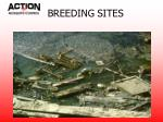 breeding sites1