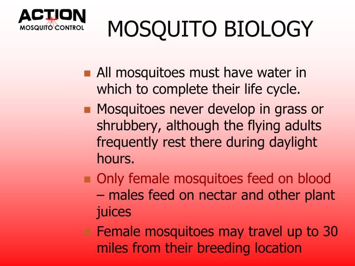 MOSQUITO BIOLOGY