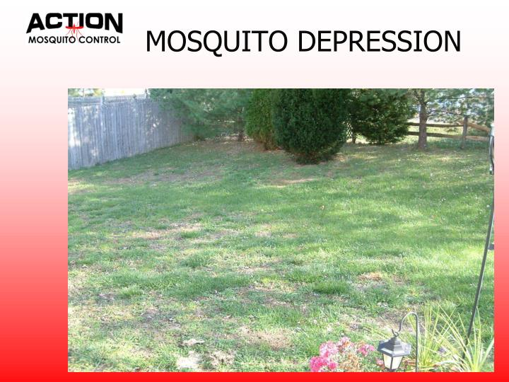 MOSQUITO DEPRESSION