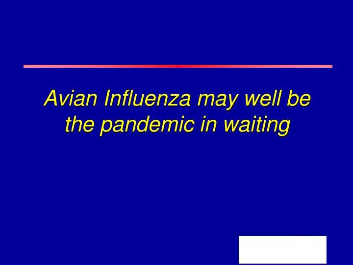 avian essay flu pandemic virus virus