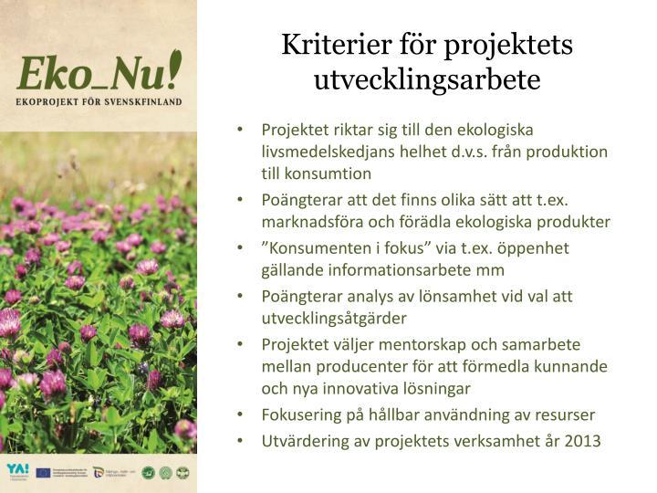 Kriterier för projektets utvecklingsarbete