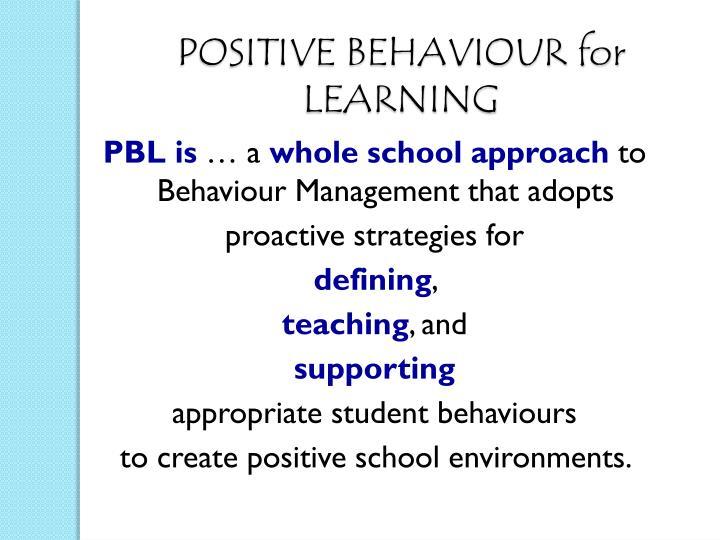 positive behaviour support essay