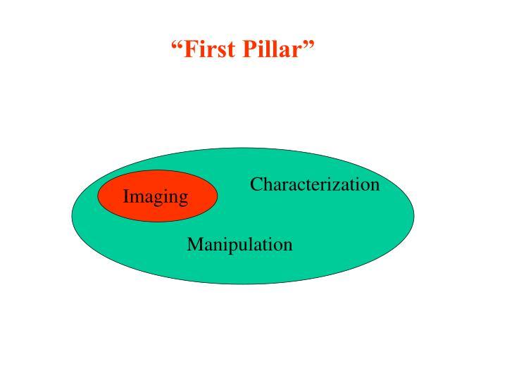 """""""First Pillar"""""""