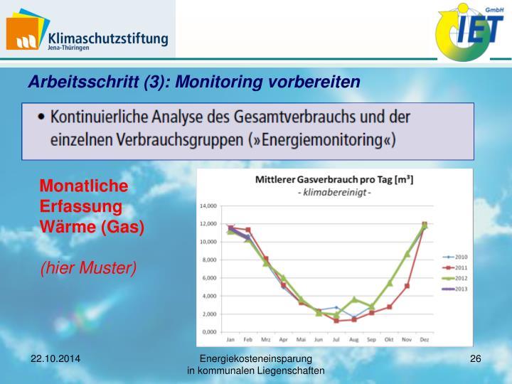 Arbeitsschritt (3): Monitoring vorbereiten