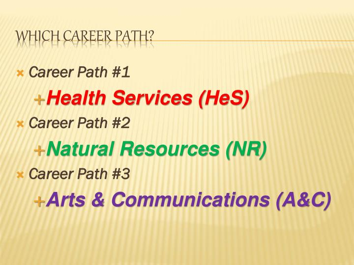 Career Path #1