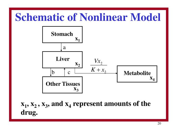 Schematic of Nonlinear Model