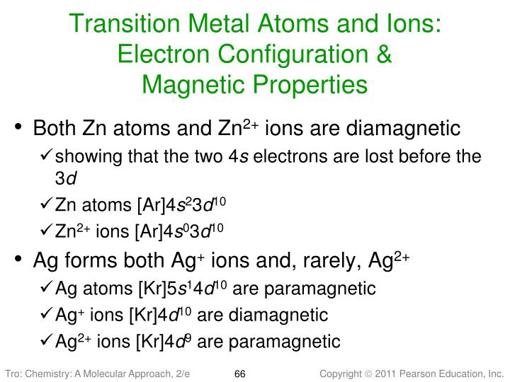 Transition Metal Atoms and Ions:
