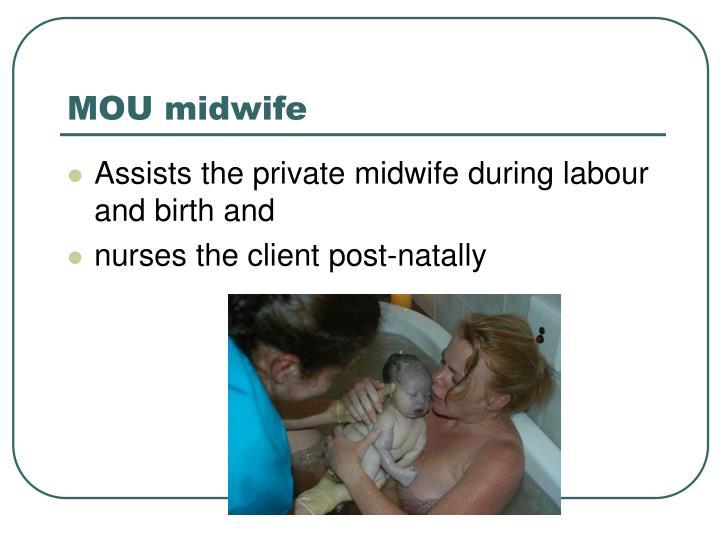 MOU midwife