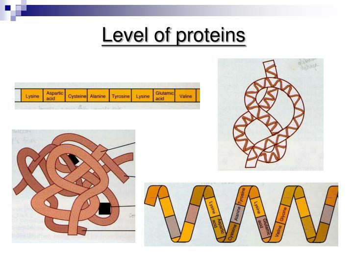 Level of proteins