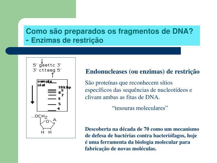 Como são preparados os fragmentos de DNA?