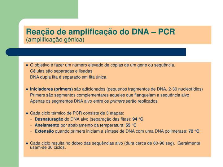 Reação de amplificação do DNA – PCR