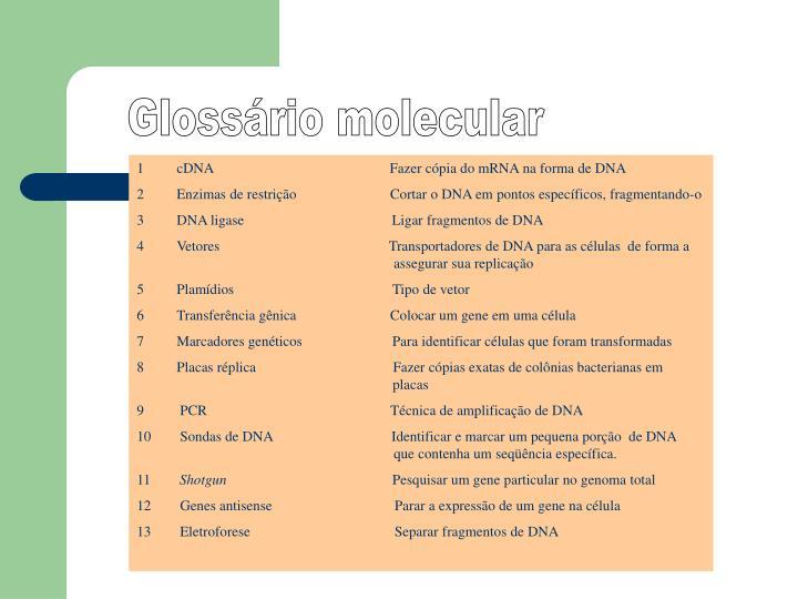Glossário molecular