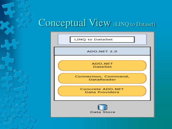 Conceptual View