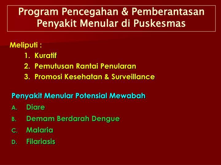 Program Pencegahan & Pemberantasan Penyakit Menular di Puskesmas