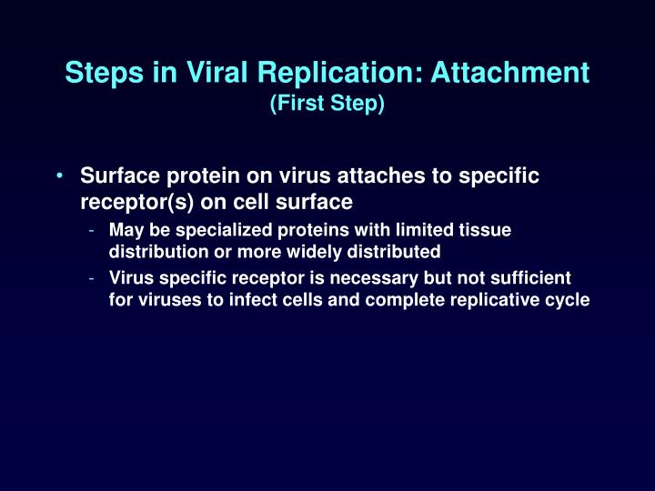 Steps in Viral Replication: Attachment