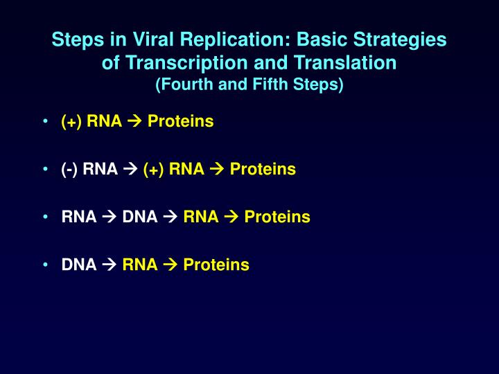 Steps in Viral Replication: Basic Strategies of Transcription and Translation