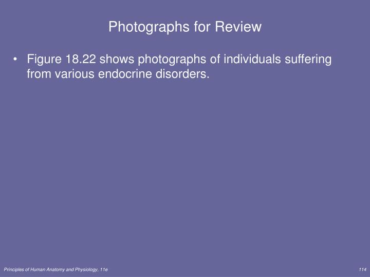 Photographs for Review