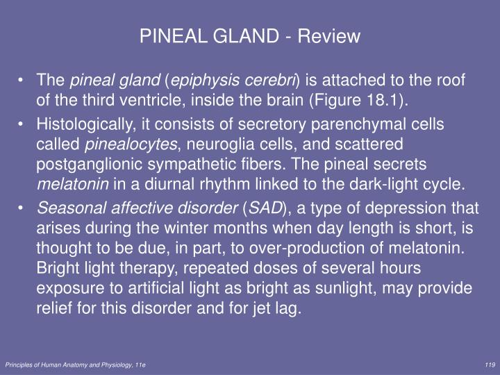 PINEAL GLAND - Review
