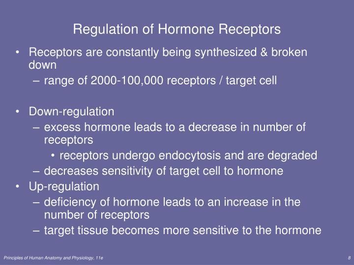 Regulation of Hormone Receptors