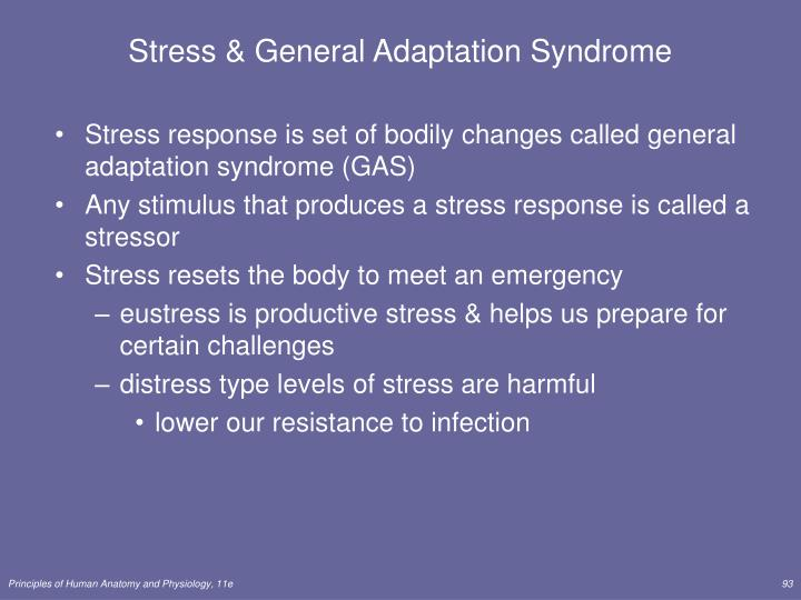 Stress & General Adaptation Syndrome