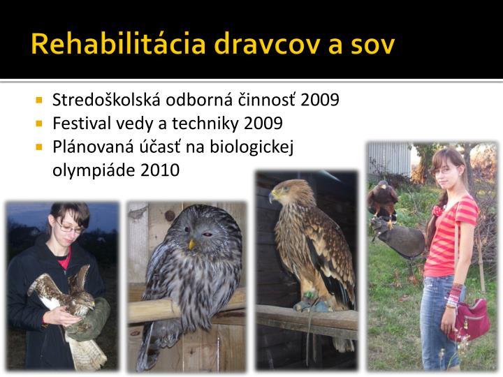 Rehabilitácia dravcov a sov
