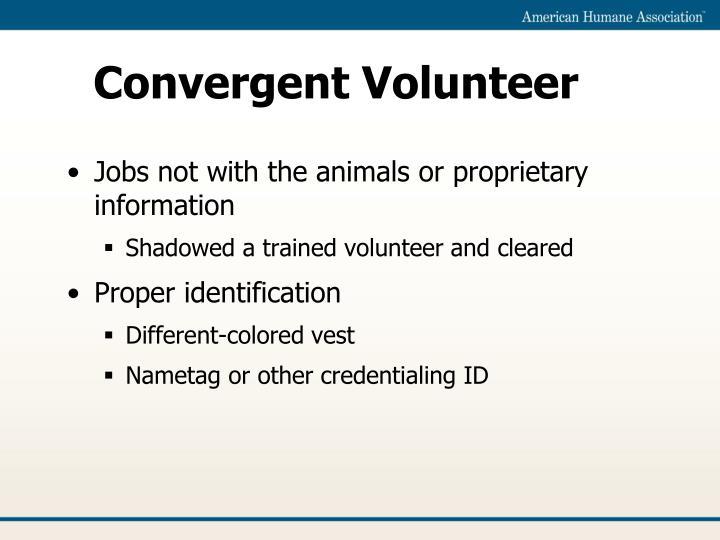 Convergent Volunteer
