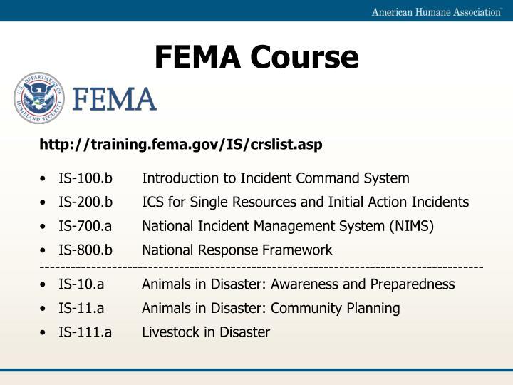 FEMA Course