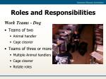 roles and responsibilities11