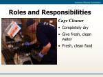 roles and responsibilities21