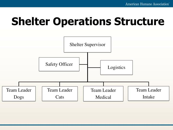 Shelter Operations Structure