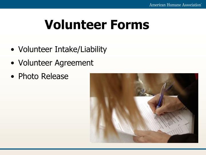 Volunteer Forms