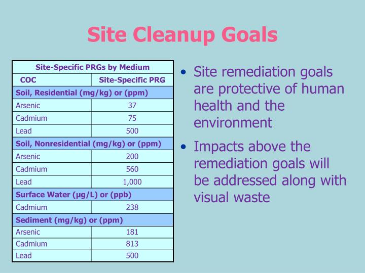 Site Cleanup Goals