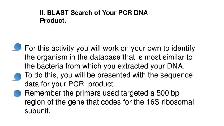 II. BLAST Search of Your PCR DNA