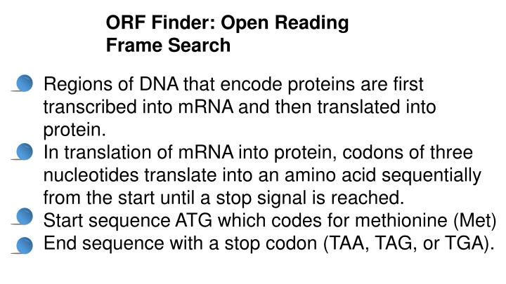 ORF Finder: Open Reading Frame